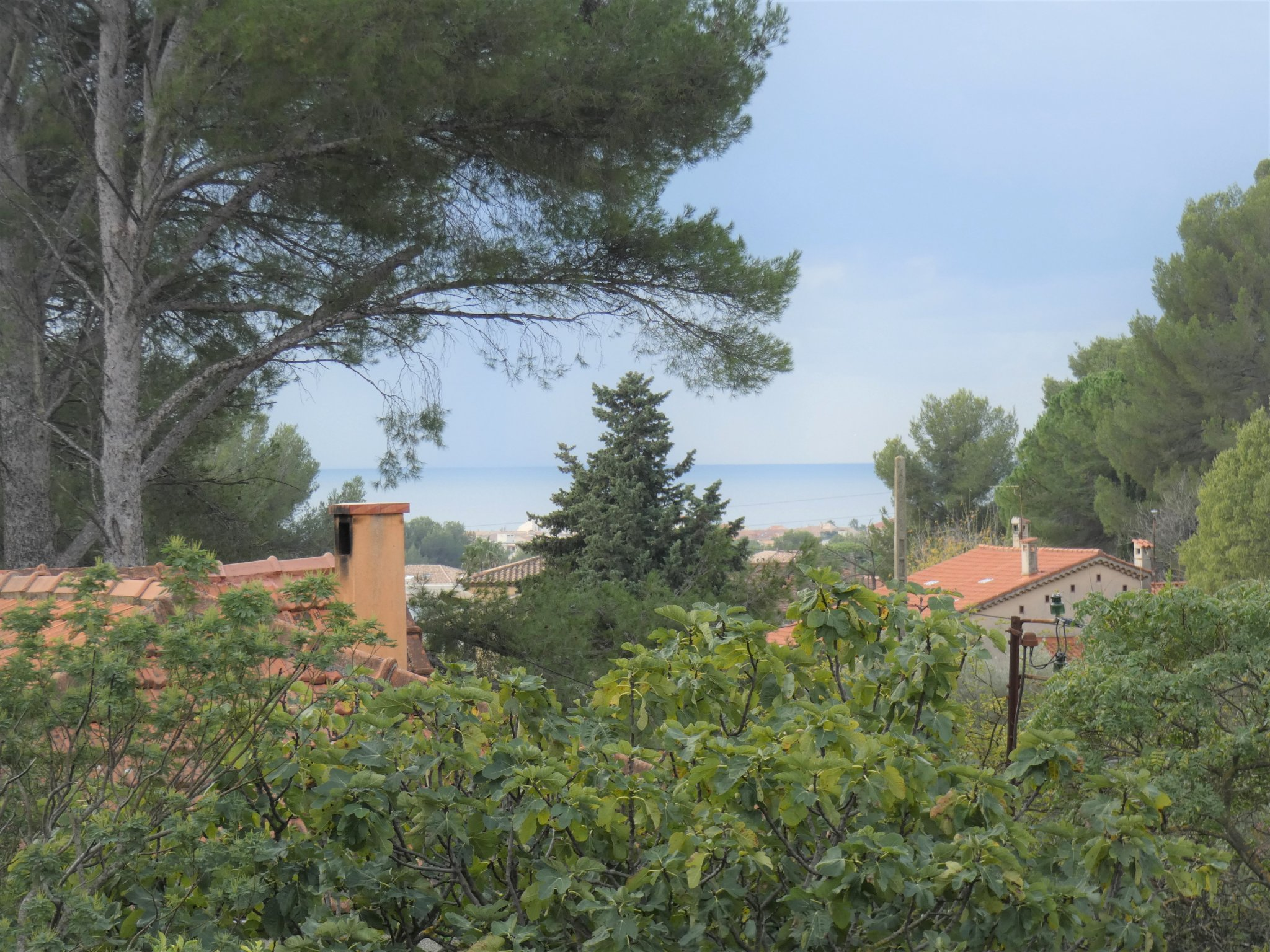 Maison-Villa - Ollioules
