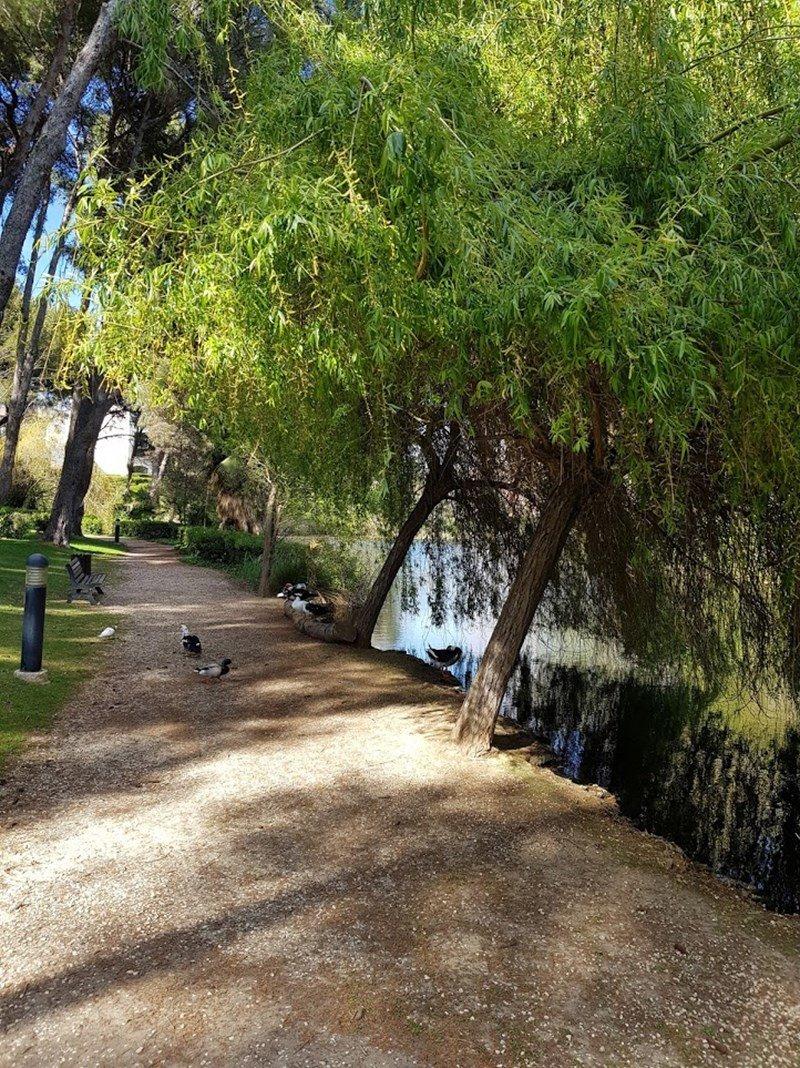 Jardin Azur T2 petite vue mer SIX FOURS LES PLAGES