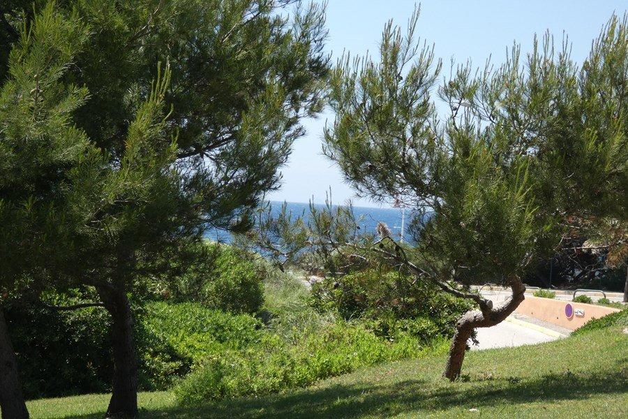 CARAVELLE T2 vue mer - WIFI SIX FOURS LES PLAGES
