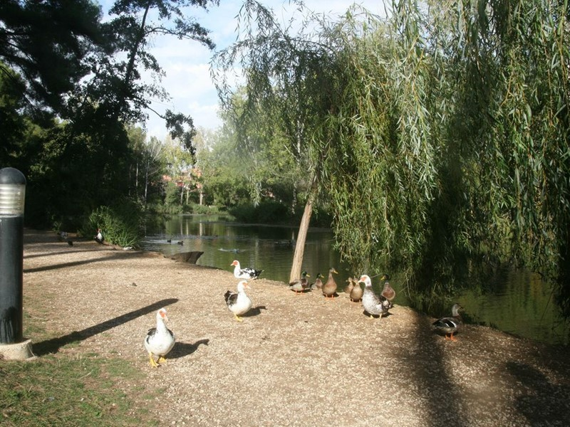 Jardin d'azur T2 cabine RDJ  SIX FOURS LES PLAGES